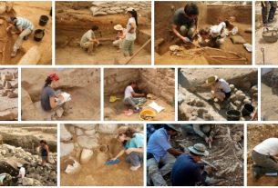 Study Archeology