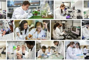 Study Biochemistry Abroad