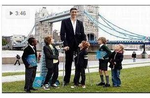 Highest Average Height